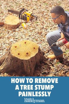 Stump Removal, Tree Stump, Landscaping Tips, Garden Landscaping, Outdoor Projects, Diy Projects, Prune Fruit, Yard Drainage, Fire Wood
