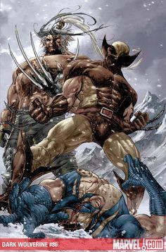 Dark Wolverine vs Wolverine by Stephen Segovia