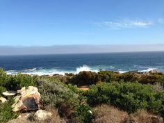 The Point - Pringle Bay - Sanderling Water, Outdoor, Water Water, Aqua, Outdoors, Outdoor Games, Outdoor Living