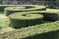 Un jardin artistique