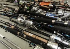 Fishing rods some having reels brands incl Shakespeare Alpha $34.99, Abu Garcia bruiser $49.99, Disney Frozen kit $14.99, Abu Garcia Vengeance $49.99, Shakespeare amphibian youth combo, etc, approx 55 pcs total