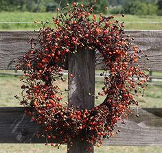 """awesome  Two Beautiful Wreaths for the Price of One. The Large is 20"""" and the Medium One is 15"""" with A Mixture of A Fiery Two Tone Orange, and Burgundy Green Berries. These Wreaths are Filled with Countless Beautiful Berries in Multiple Sizes. Hang One On The Wall and Use the Other As an Accent Piece Around a Candle on Your Table.   https://www.silkyflowerstore.com/product/flora-decor-fall-berry-wreath-set-2-piece-set-20-15-autumn-berry/"""