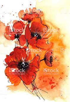 Poppy Illustration - Mohnblumen Aquarell royalty-free poppy illustration mohnblumen aquarell stock vector art & more images of abstract