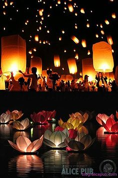 Today I'm crazy about Paper Lanterns! Made popular in China with red lanterns, which symbolize happiness, they have become a popular decoration for weddings all over the world. Paper lanterns will give your wedding a romantic and dazzling glow. You can find them online through retailers such as Luna