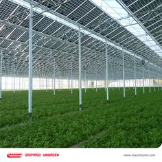 • Inovații agricole •  Viitorul este dat ce serele fotovoltaice care în momentul acesta sunt în curs de dezvoltare și se pare că în anii care urmează acestea vor fi disponibile și în România. Utilizarea panourilor fotovoltaice ar putea reduce substanţial cheltuielile cu energia termică şi electrică necesară funcţionării. Mai mult, panourile fotovoltaice de pe sere vor putea asigura un surplus de energie ce va putea fi comercializat pe piaţă, aducând profituri însemnate agricultorilor.