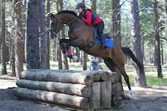 cross country eventing - brave horses and humans!   Hell Yeah!!!!!