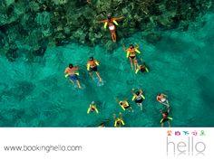 VIAJES PARA JUBILADOS. Las aguas del Mar Caribe son perfectas para hacer snorkeling, sin necesidad de ser un experto nadando. La costa de Puna Cana, es el lugar perfecto para descubrir la vida submarina y contemplar la variedad de peces multicolores. En Booking Hello, te recomendamos agregar experiencias nuevas a tu vida durante tus vacaciones y vivir un viaje inigualable. Te invitamos a visitar nuestro sitio web, para conocer cómo adquirir tu pack con nosotros. #HelloExperience