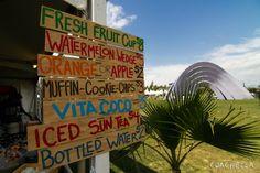 Travel Guide for Coachella