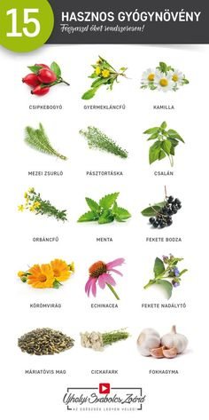 Health 2020, Forever Living Products, Doterra, Vegetable Garden, Health Care, Clean Eating, Health Fitness, Herbs, Nutrition