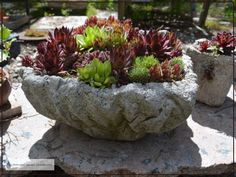Faux Wood Hypertufa Pot