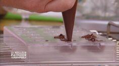 Courbe de temperature chocolat