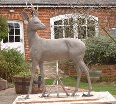 Image result for male roe deer