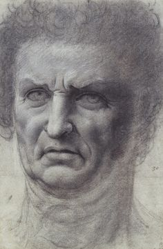 A drawing of the head of a clean-shaven man of Leonardos warrior type, seen almost full face. He has a furrowed brow and a mass of fuzzy hair. Drawing Heads, Royal Collection Trust, Renaissance Artists, Academic Art, Art Inspiration Drawing, Horse Sculpture, Historical Art, Portrait Art, Portraits