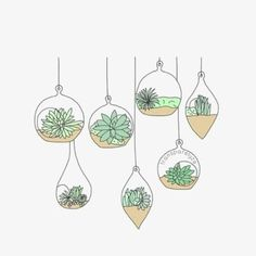 "Search Result for ""bullet journal dessin plante"" - Hanging Succulents, Hanging Plants, Plants Indoor, Outdoor Plants, Hanging Baskets, Doodle Drawings, Doodle Art, Doodle Lettering, Hand Lettering"