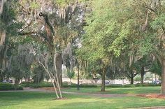 Savannah Getaways : Savannah : Historic District : Historic District Maps