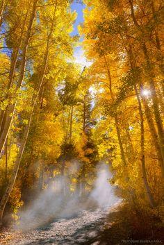 Shaft of light by Tsuyoshi Shirahama on 500px )