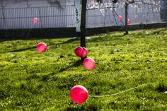 L'alba del Jambellico - brina e palloncini