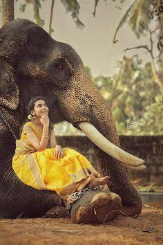 Awsome Elephant Photography, Dream Photography, Girl Photography Poses, Elephant India, Elephant Love, Best Photo Poses, Girl Photo Poses, Kerala Travel, Indian Photoshoot