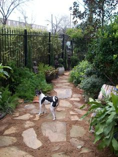 Dog Friendly Garden Landscaping | Found on roomzaar.com