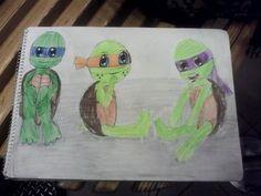 Cute turtle babies