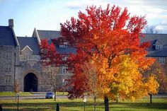 Fall in Blacksburg .... Nothing better