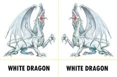 Fantasy Monsters 097 - White Dragon