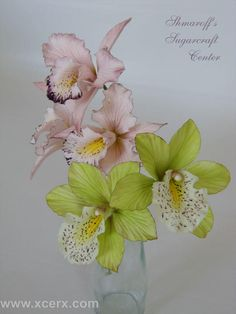 Orchids  - Cake by Petya Shmarova