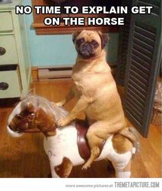 This may in fact by a puggle, but I'll take it anyway, lol