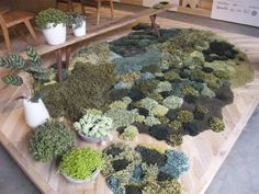 Recycled pasturelands rug at home office. Photo