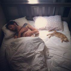 熱い、少年、猫、愛