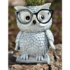 Woodland Critters with Eye Glasses Novelty Planters (Owl) Owl Kitchen, Woodland Critters, Owl Always Love You, Beautiful Owl, Owl Crafts, Owl Bird, Paperclay, Night Owl, Cute Owl
