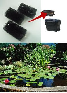 Pond Filter Replacement Filter Brushes pack) for Aquael & Others for sale online Pond Filter Media, Pond Filters, Brushes, Packing, Plants, Ebay, Bag Packaging, Blush, Plant