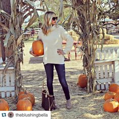 "Fall is in the air  #fallfashion #instafashion #fashionguru #fashionlover #fashionstyle #instadaily #fall #pumpkins #sweaterweather  #Repost @theblushingbella with @repostapp.  Chunky Sweaters  Skinnies  Booties = Fall Uniform  I think I could write a new blog titled ""31 days 31 Pumpkin Patches"". seriously though favorite weekend activity. What will I do when this month ends??   #fallprobs #ineedalife #blogger #lifestyleblogger #fashion #ootd #wiw #sweaterweather #dolcevitababe #liketkit…"