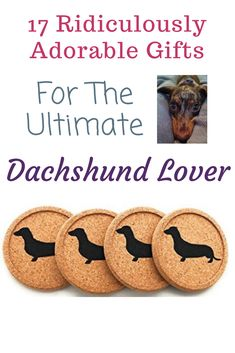 Who doesn't love dachshunds?! These gifts are amazing for any doxie lovers!  funny #dachshund   dachshund clothes   dachshund art   long haired dachshund   miniature dachshund   dapple dachshund   dachshund stuff   dachshund facts   dachshund decor   dachshund humor   dachshund mix   dachshund memes   dachshund black and tan   wirehaired dachshund   piebald dachshund   dachshund costume   sausage dog   doxie   dachshund gifts