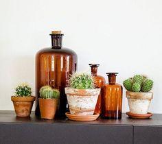¡Decora con detalles verdes! | Cuidar de tus plantas es facilisimo.com