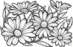 Printable Flower Coloring Pages, Easy Coloring Pages, Pattern Coloring Pages, Printable Adult Coloring Pages, Mandala Coloring Pages, Daisy Drawing, Daisy Painting, Wood Burning Stencils, Stencil Wood