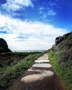 Outdoorsy Mama : Puddle Stepping Stones. Tennessee Valley Beach. No...