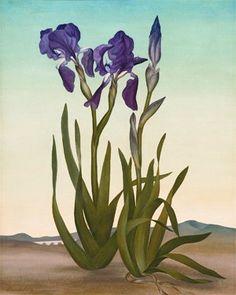 Helen Lundeberg - Iris 1937