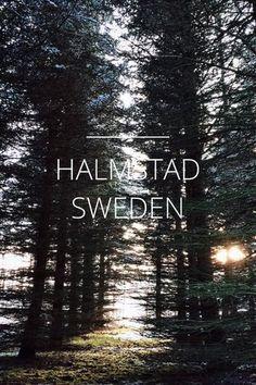 Halmstad, Sweden story by David Alexander Lomelino on Steller