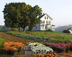 New England Farmhouse in Autumn by ultraloth, via Flickr