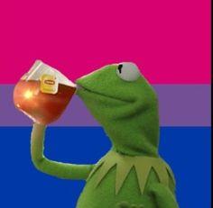 Bi Memes, Bi Flag, Gay Aesthetic, Bisexual Pride, Kermit The Frog, After Life, Frogs, Flag Art, Cuffed Jeans