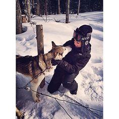 Trineo con perros 🐶👌🍁❄️ #beautiful