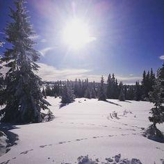 Deilig utslitt etter en dag på ski i dette været #luksus #finvær #Norge#Norway #ferie#holiday #langrenn #sjusjøen #vinteraktivitet #vinter #vinterferie #vinterlandskapet
