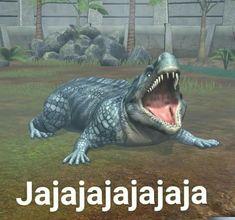 Image Memes, Meme Faces, Spanish Memes, Bts Memes, Funny Memes, Reaction Pictures, Funny Pictures, Chiste Meme, Derp