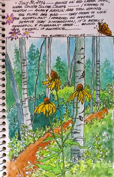 The Painted Prism: SKETCHBOOK ASSIGNMENT: Trees & Leaves -- 10 Exercises to Try