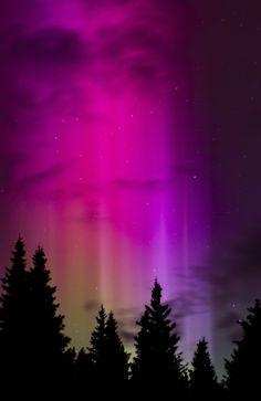 The Northern Lights #Alaska #Winter