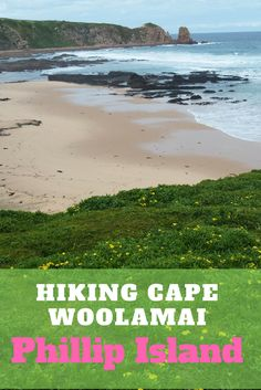 If you like beautiful scenery and you are heading to Phillip Island in Victoria (Australia), check out the Cape Woolamai Circuit. This 8.3 kms hike is an easy hike offering some gorgeous views over parts of the island, Bass Strait and Woolamai Beach.