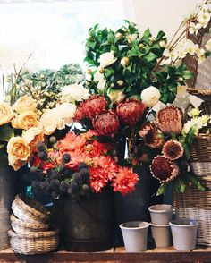 Monday blooms. Visit both locations for our selection of faux florals!