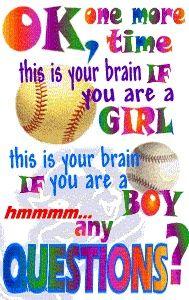 Softball <