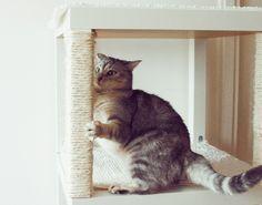 Un arbre à chat IKEA DIY A découvrir sur http://www.bidouillesikea.com/bidouilles/autres/arbre-a-chat-ikea-diy